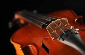 Violin dark back web